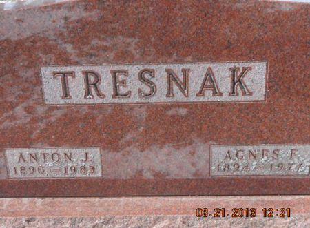 CACEK TRESNAK, AGNES F. - Linn County, Iowa | AGNES F. CACEK TRESNAK