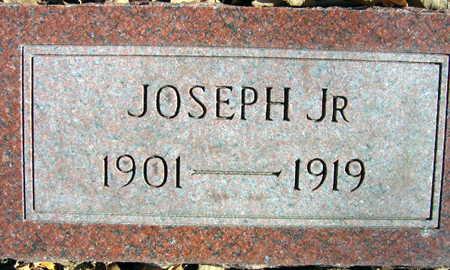 VAVERKA, JOSEPH, JR. - Linn County, Iowa | JOSEPH, JR. VAVERKA