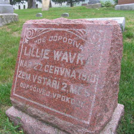 VAVRA, LILLIE - Linn County, Iowa | LILLIE VAVRA