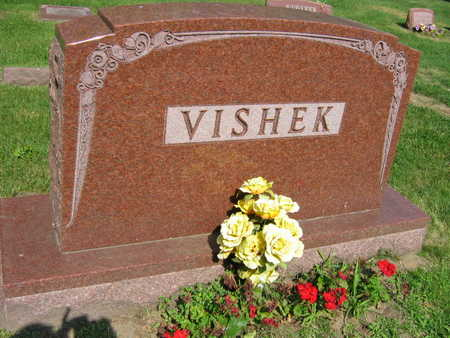 VISHEK, FAMILY STONE  (VISHEK FILIPY) - Linn County, Iowa | FAMILY STONE  (VISHEK FILIPY) VISHEK