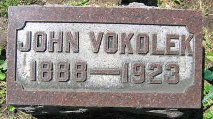 VOKOLEK, JOHN - Linn County, Iowa | JOHN VOKOLEK