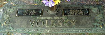 VOLESKY, CARL F. - Linn County, Iowa | CARL F. VOLESKY