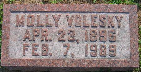 VOLESKY, MOLLY - Linn County, Iowa   MOLLY VOLESKY