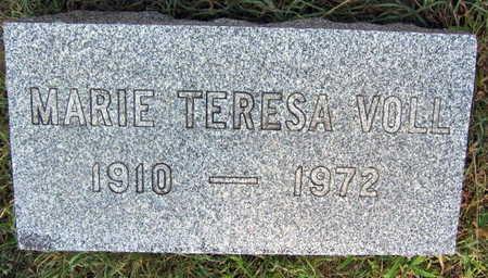 VOLL, MARIE TERESA - Linn County, Iowa | MARIE TERESA VOLL