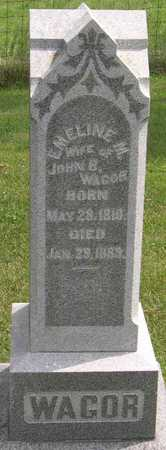 WAGOR, EMELINE M. - Linn County, Iowa | EMELINE M. WAGOR