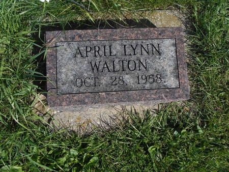 WALTON, APRIL LYNN - Linn County, Iowa | APRIL LYNN WALTON