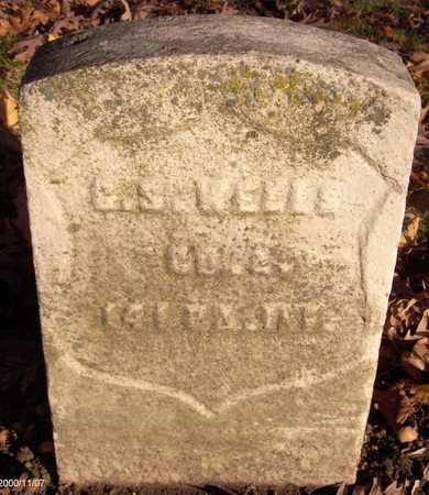 WELLS, G.S. - Linn County, Iowa | G.S. WELLS