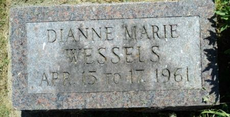 WESSELS, DIANNE MARIE - Linn County, Iowa   DIANNE MARIE WESSELS
