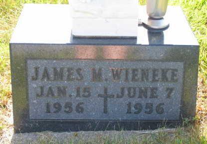 WIENEKE, JAMES M. - Linn County, Iowa | JAMES M. WIENEKE