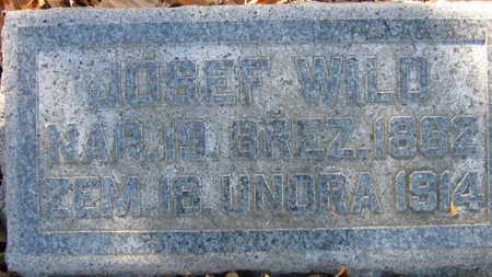 WILD, JOSEF - Linn County, Iowa | JOSEF WILD