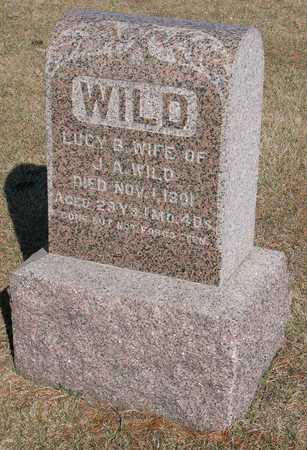 WILD, LUCY B. - Linn County, Iowa | LUCY B. WILD