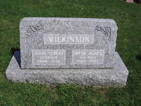 WILKINSON, JOHN ALBERT - Linn County, Iowa | JOHN ALBERT WILKINSON