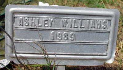 WILLIAMS, ASHLEY - Linn County, Iowa | ASHLEY WILLIAMS
