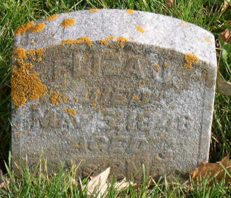 YEISLEY, ELIZA J. - Linn County, Iowa | ELIZA J. YEISLEY