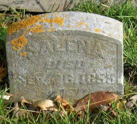 YEISLEY, SALENA - Linn County, Iowa | SALENA YEISLEY