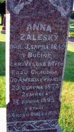 ZALESKY, ANNA - Linn County, Iowa | ANNA ZALESKY