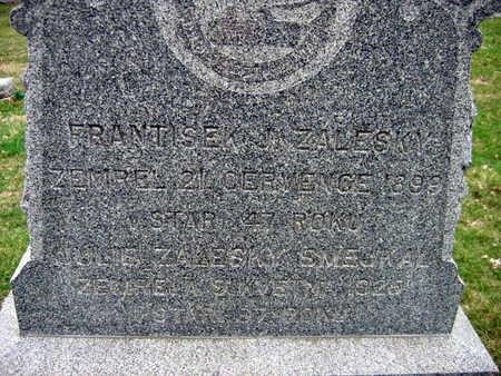 ZALESKY, FRANTISEK - Linn County, Iowa | FRANTISEK ZALESKY