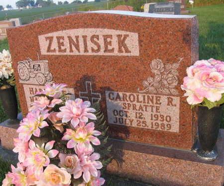 ZENISEK, CAROLINE R. - Linn County, Iowa | CAROLINE R. ZENISEK