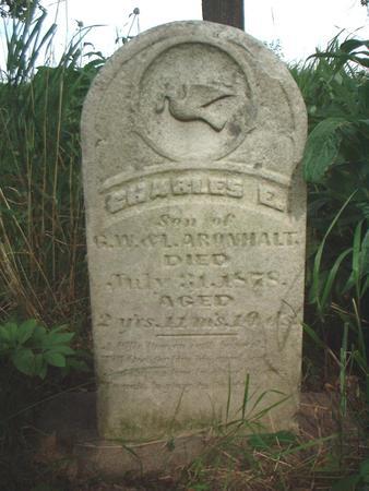 ARONHOLT, CHARLES - Louisa County, Iowa | CHARLES ARONHOLT