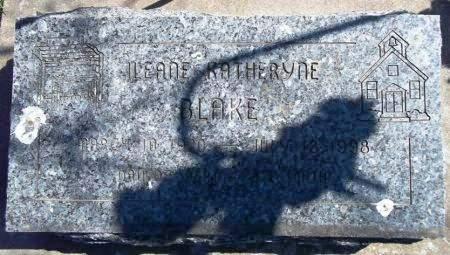 BLAKE, ILEANE KATHERYNE - Louisa County, Iowa   ILEANE KATHERYNE BLAKE