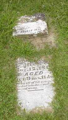 CHRISTOLEAR, SARAH I. - Louisa County, Iowa | SARAH I. CHRISTOLEAR