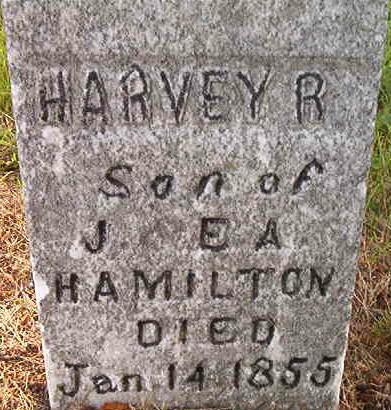 HAMILTON, HARVEY R. - Louisa County, Iowa | HARVEY R. HAMILTON