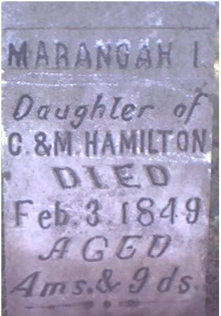 HAMILTON, MARANGAH I. - Louisa County, Iowa   MARANGAH I. HAMILTON
