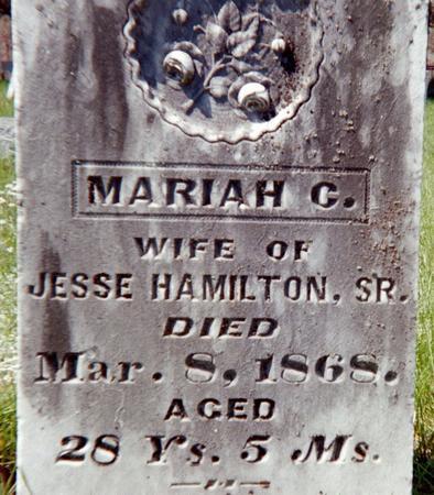 HAMILTON, MARIAH C. - Louisa County, Iowa | MARIAH C. HAMILTON