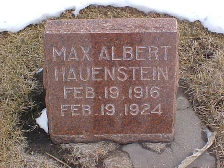 HAUENSTEIN, MAX ALBERT - Louisa County, Iowa | MAX ALBERT HAUENSTEIN
