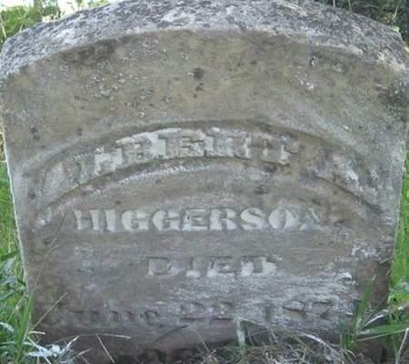 HIGGERSON, ALBERT A. - Louisa County, Iowa | ALBERT A. HIGGERSON