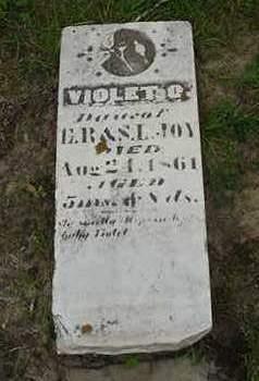 JOY, VIOLET  O. - Louisa County, Iowa | VIOLET  O. JOY