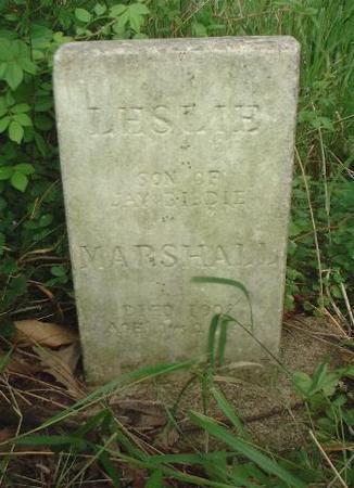 MARSHALL, LESLIE - Louisa County, Iowa   LESLIE MARSHALL