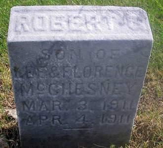 MCCHESNEY, ROBERT S. - Louisa County, Iowa | ROBERT S. MCCHESNEY