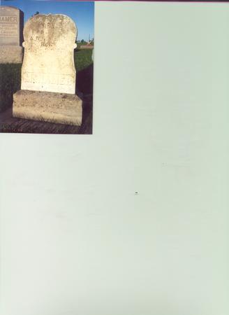 MCNAMER, MARY E. (ELLEN) - Louisa County, Iowa | MARY E. (ELLEN) MCNAMER