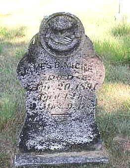 MICKEY, JAMES B. - Louisa County, Iowa | JAMES B. MICKEY
