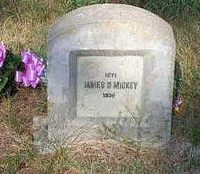 MICKEY, JAMES D. - Louisa County, Iowa   JAMES D. MICKEY