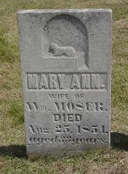 MOSER, MARY ANN - Louisa County, Iowa | MARY ANN MOSER