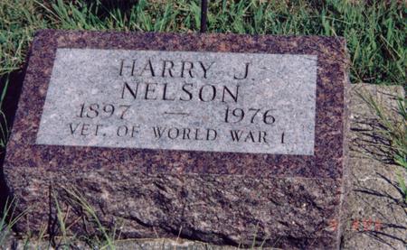 NELSON, HARRY - Louisa County, Iowa   HARRY NELSON