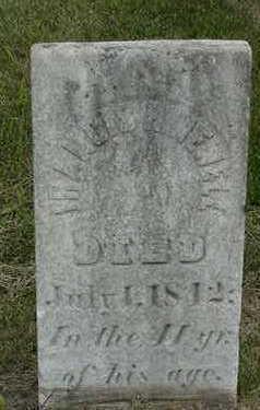 NEWELL, FRANCIS H. - Louisa County, Iowa | FRANCIS H. NEWELL