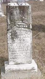 SMITH, WALTER LEE - Louisa County, Iowa | WALTER LEE SMITH