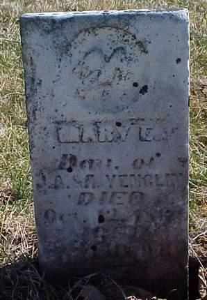 VENGLIN, MARY E. - Louisa County, Iowa | MARY E. VENGLIN