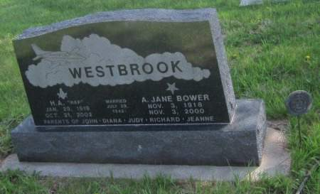 WESTBROOK, A. JANE - Louisa County, Iowa | A. JANE WESTBROOK
