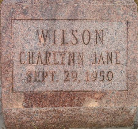 WILSON, CHARLYNN JANE - Louisa County, Iowa | CHARLYNN JANE WILSON