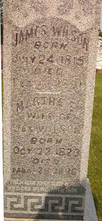 WILSON, MARTHA E. - Louisa County, Iowa   MARTHA E. WILSON