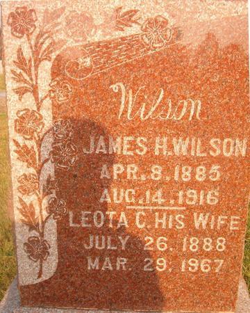 WILSON, LEOTA C. - Louisa County, Iowa | LEOTA C. WILSON