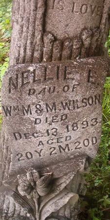 WILSON, NELLIE E. - Louisa County, Iowa   NELLIE E. WILSON