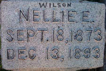 WILSON, NELLIE E. - Louisa County, Iowa | NELLIE E. WILSON