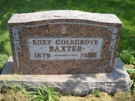 BAXTER, ROXY - Lucas County, Iowa | ROXY BAXTER