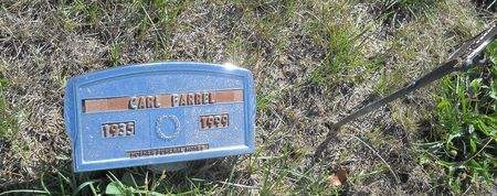 FARRELL, CARL - Lucas County, Iowa | CARL FARRELL
