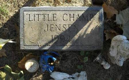 JENSON, LITTLE CHAMP - Lucas County, Iowa   LITTLE CHAMP JENSON